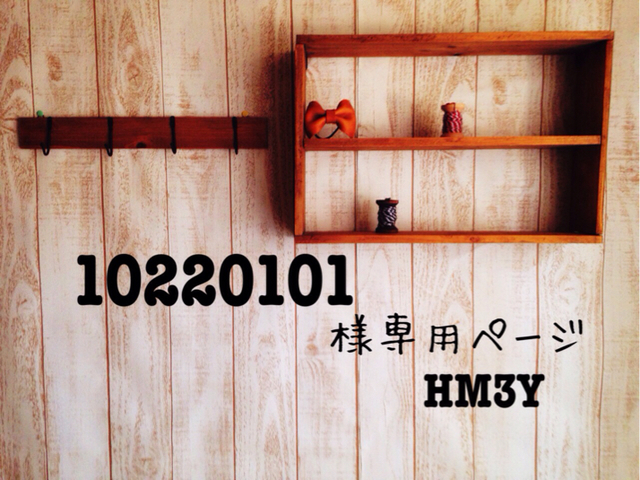 10220101 様専用ページ