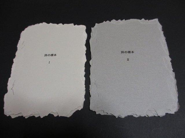 2冊組詩集「詩の標本1」「詩の標本2」