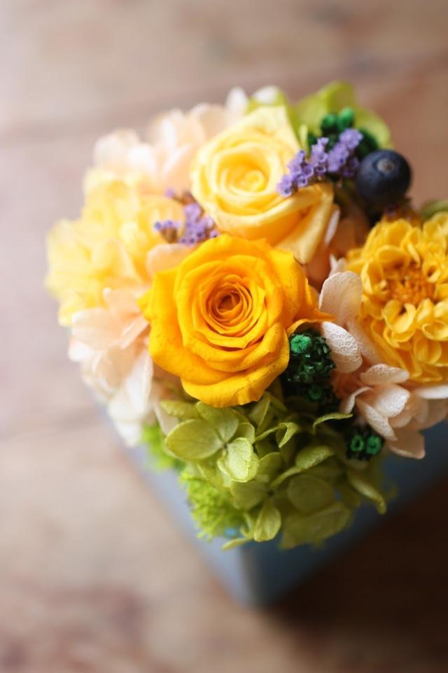 Preserved Arrangement-Yellow-