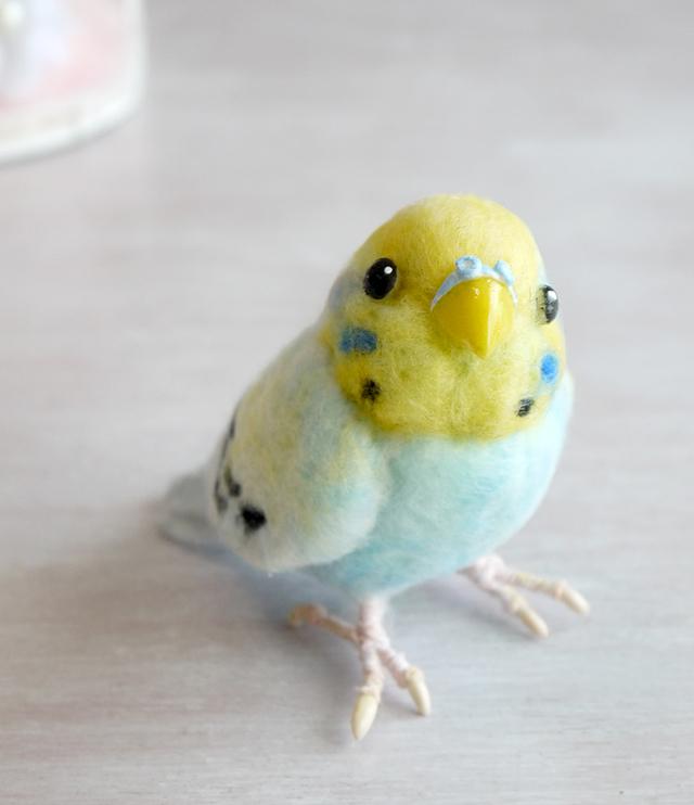 羊毛フェルトの小鳥 透明ケース入りレインボー色のセキセインコ