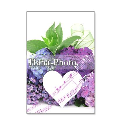 1096) 紫陽花 赤、水色 ピンク アレンジなど ポストカード5枚組