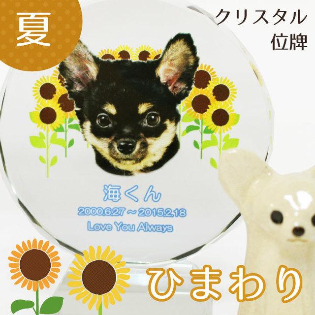 ペット位牌 サークル型 (小) 「 ひまわり 」 クリスタル 夏