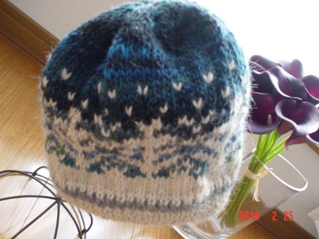 ☆彡アルパカ100%毛糸の北欧柄編み込み漆黒と白夜の森ニット帽