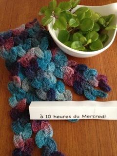 l'écharpe multicolore