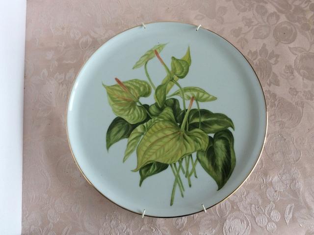 アンセリュウムの絵皿