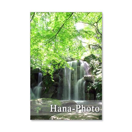 ☆★1091) 美しい新緑と水の風景   ポストカード5枚組 再販3