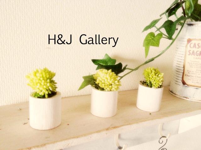 ☆小さな植木鉢*セダム 白