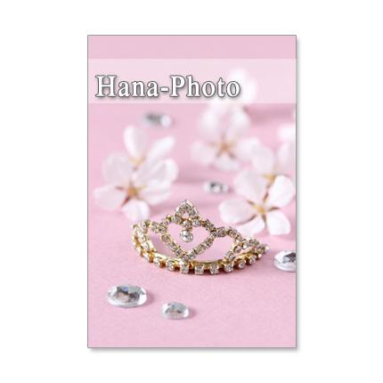 1120) 幸せな結婚 2 ジューンブライド  ポストカード5枚組