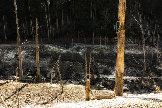 P012海上の森砂防池(A4)