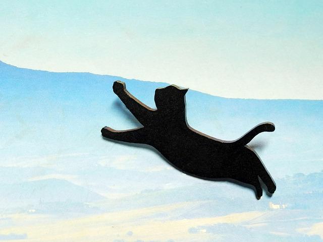 【送料¥80】 黒猫(クロネコ)ブローチ 【空を飛ぶ】 スタンド付