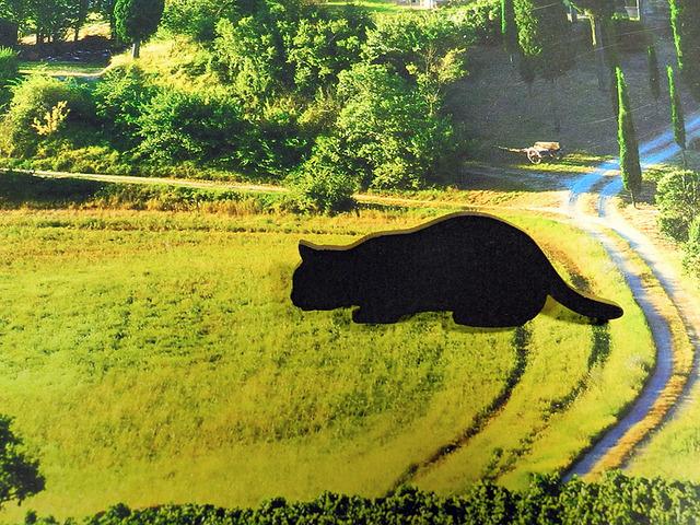【送料¥80】 黒猫(クロネコ)ブローチ 【獲物?を狙う】 スタンド付