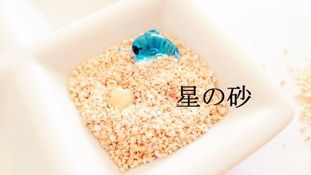 【10g】 星の砂 約1mm〜3mm前後