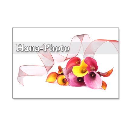 1128)カラフルなカラー   ポストカード5枚組