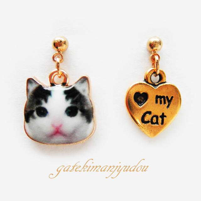 My Cat �Ϥ�����ǭ?�ԥ����ڥ������ѹ��ġ�