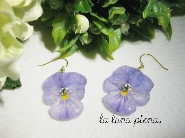 ◇k14gf◇ Violaピアス wisteria