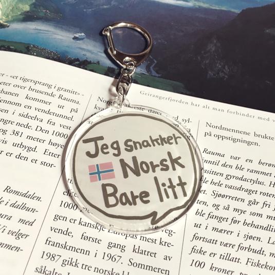 私はノルウェー語を少しだけ話し...