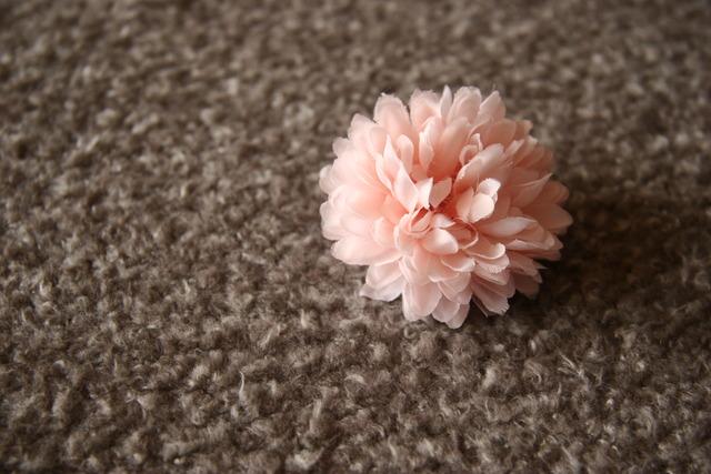 mini corsage / マム:ピンク系5