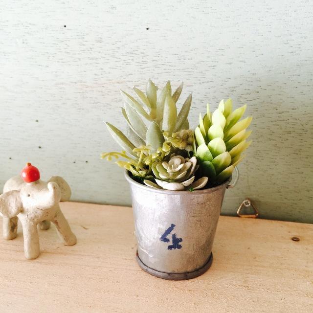 小さなバケツの寄せ植えNo.4