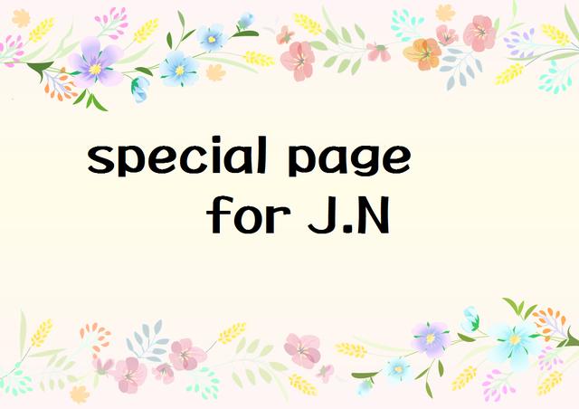 J.N様 専用ページ