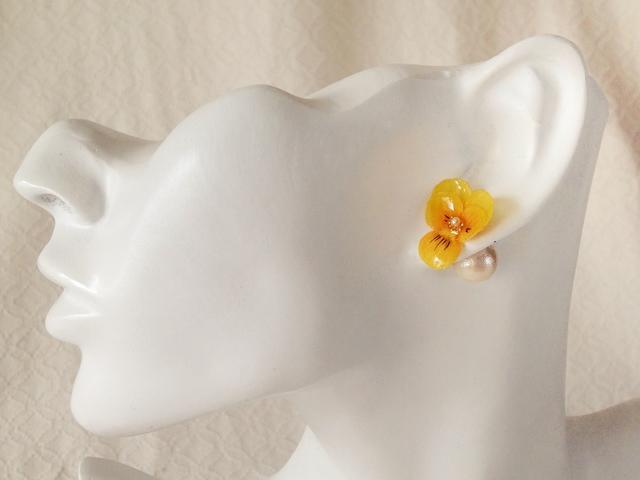 染め花を樹脂加工したビオラピアス・コットンパールキャッチ( SS・イエロー)