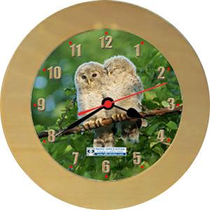 壁掛時計「エゾフクロウ 2」