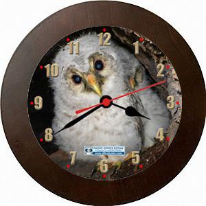 壁掛時計「フクロウ ひな 1」