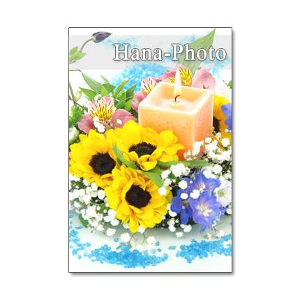1156) ヒマワリ 7    アレンジメント   ポストカード5枚組