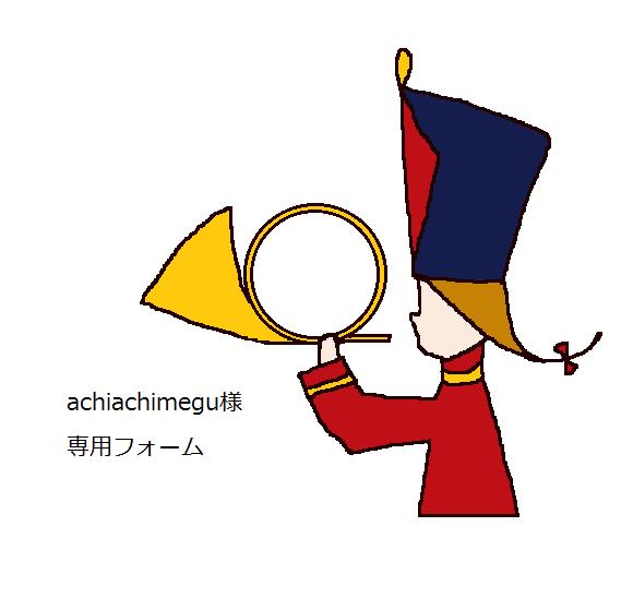 ◎achiachimeguさま専用フォーム◎