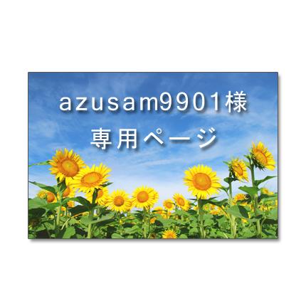 azusam9901様専用ページ