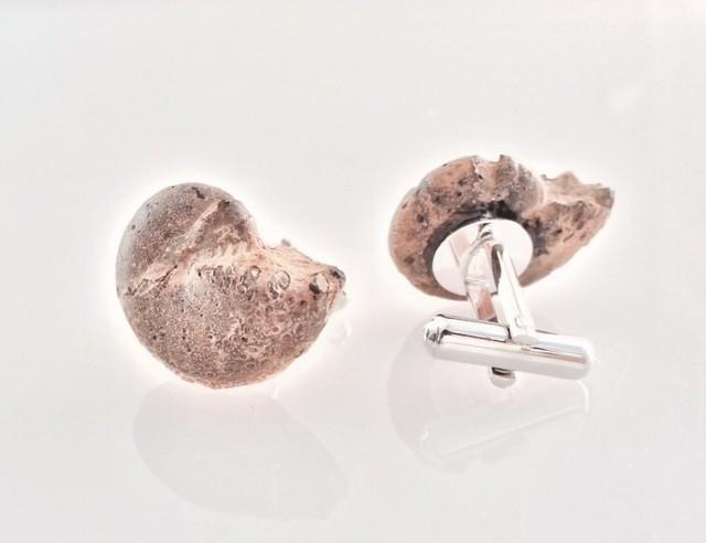 アンモナイト化石◇カフス