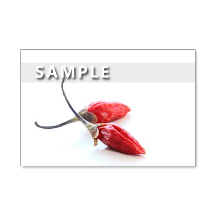 1170) 真っかなクコの実、栗、柚子など  ポストカード5枚組