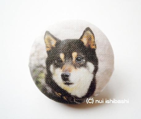 M&Nオリジナル写真布バッジ/黒柴と桜B