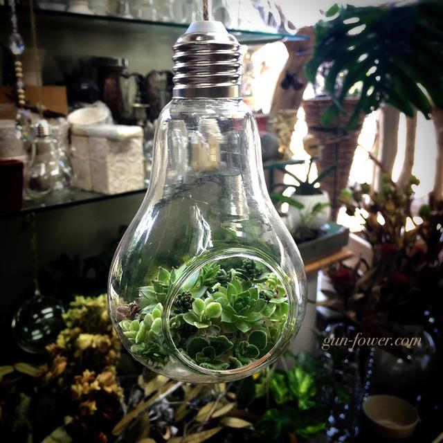 電球型のガラス花器サキュレント寄せ植...