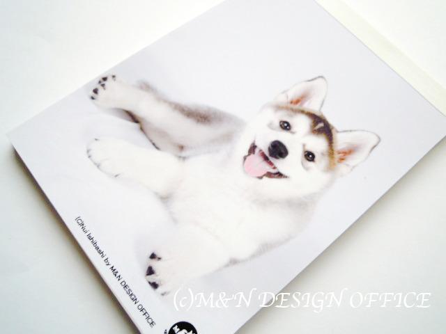 ハスキーの子犬のメモ帳