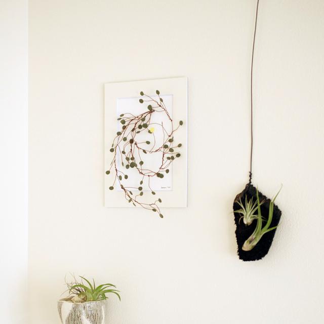 紙の植物アート Ppaer plant art 003 ワ...