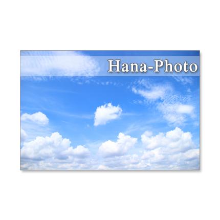 1172)大好きな青い空      ポストカード5枚組