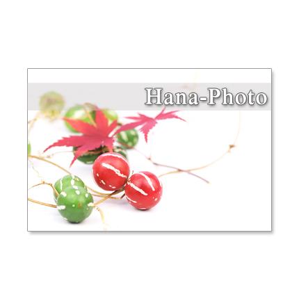 1173)  秋の実や葉       ポストカード5枚組