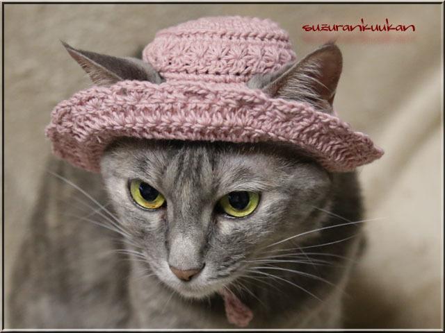 【猫用】編みスラウチハット025<ローズミスト>