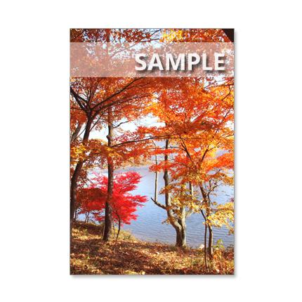 1174) 紅葉の美しい榛名山、榛名湖風景    ポストカード5枚組