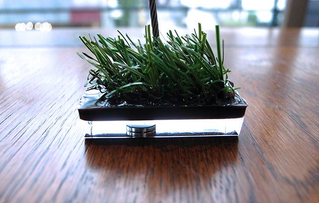 水面に浮かぶ小さな草原。メモクリップスタンド。芝memo。(ブラウン)