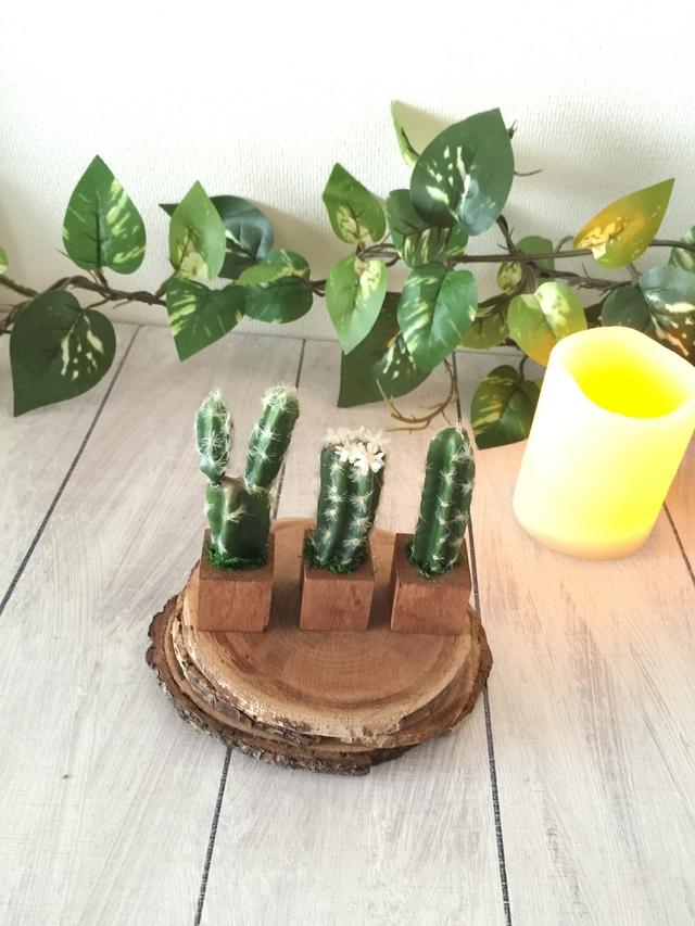 小さな植木鉢*サボテン3個セット