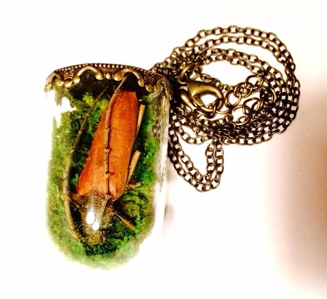 sale! カミキリムシの標本ネックレス