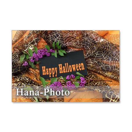 1181) ハロウィン 3       ポストカード5枚組