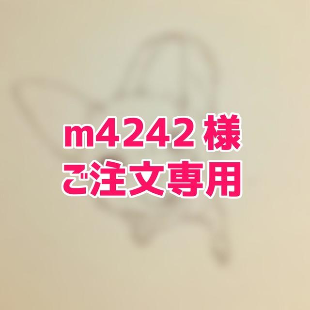 【m4242様】オーダーフレークシール