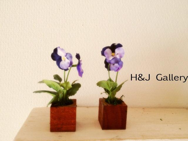 ☆小さな小さなちーさな植木鉢*パンジー 茶鉢