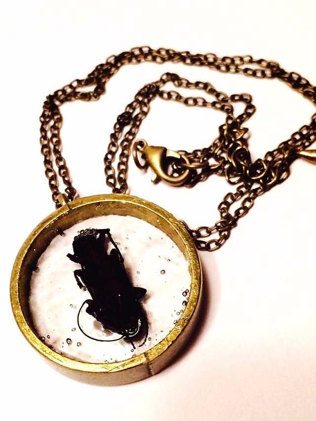 sale! カミキリムシ気泡昆虫標本ネックレス
