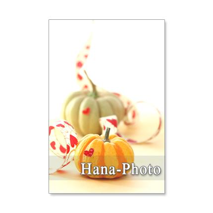 1183) ハロウィン 5       ポストカード5枚組