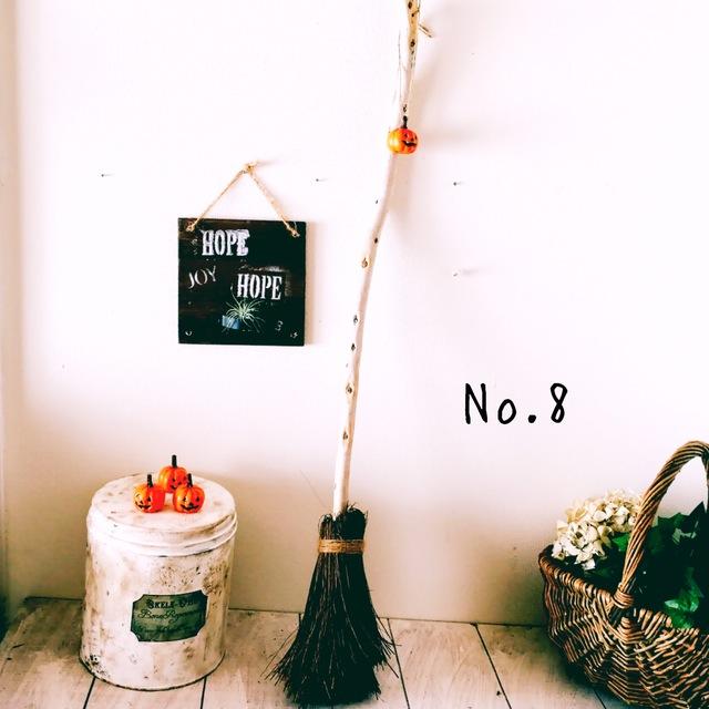 魔法のほうき No.8 ミニかぼちゃ付き