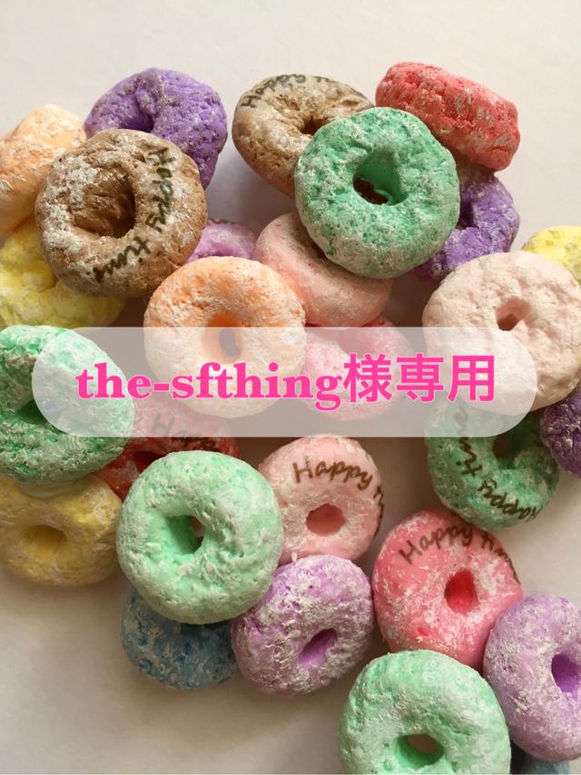 the-sfthing様専用