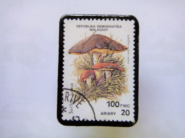 マダガスカル 切手ブローチ1402